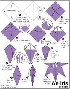origami iris instructions